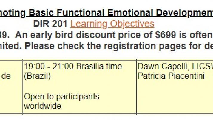 Curso online DIR 201 em português com Patrícia Piacentini