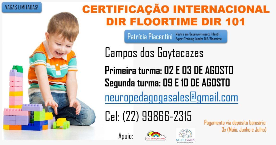 CURSO DIR 101                Campos dos Goytacazes